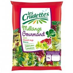 Sachet Salade Gourm.70G C