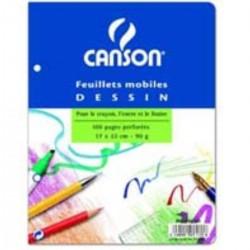 Canson F.M. Dessin 17X22 100P