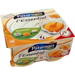 Pat.L Essentiel Abricot 4X100G