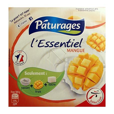 Pat L Essentiel Mangue 4X100G