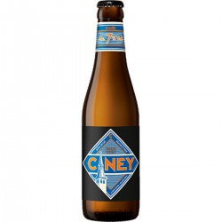 Ciney Biere Brune 33Cl