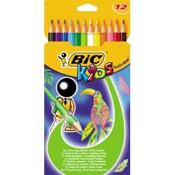 Poc.12 Crayons De Couleur Bic
