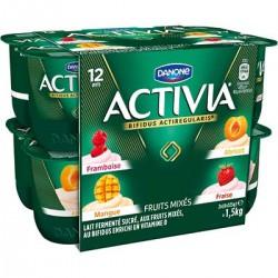Danone Activia Frt Mix.12X125G