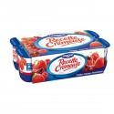 Recette Cremeuse Fruit Panache 8X125G