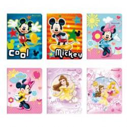 Disney Cahier 17X22 32P 2Lign